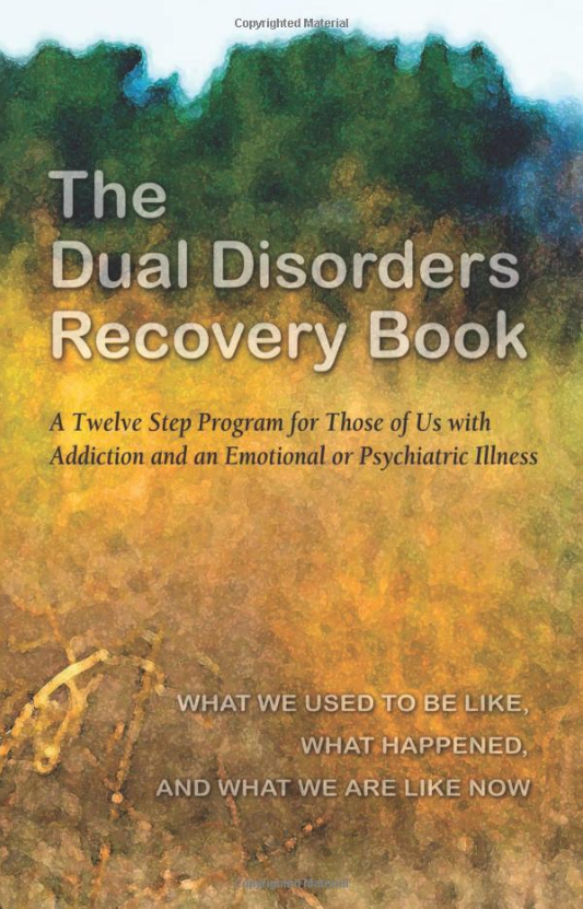 The Dual Discorders Recovery Book